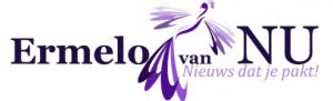 ermelo-van-nu-logo
